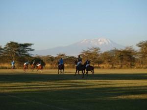 Pferdeosteopathie Tansania
